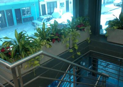 Banco Ciudad Piletones